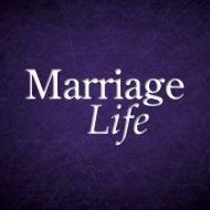 MarriageLife Art