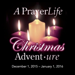 PrayerLife Advent Square